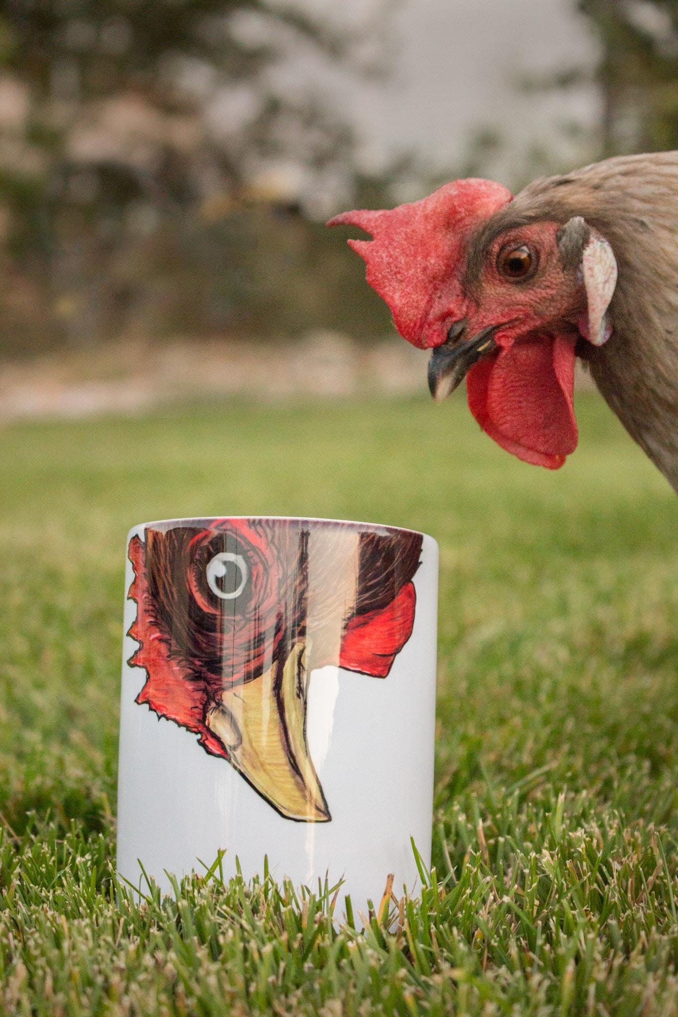 Chari Laree Photography Chicken With A Mug In A Yard